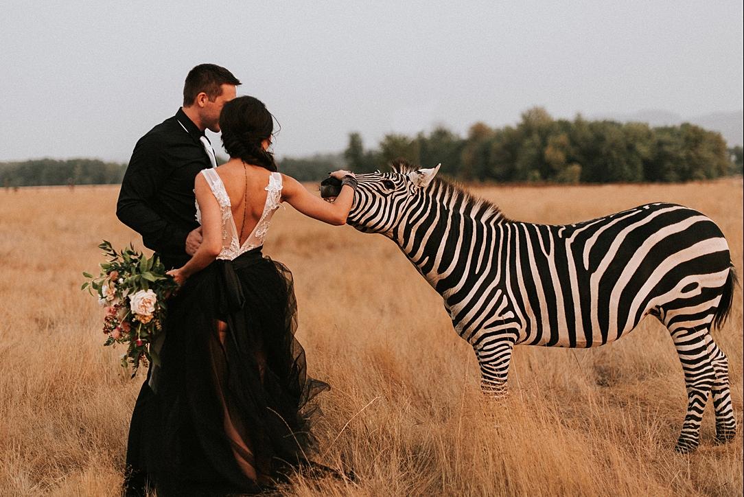 nbp-moody-safari_0008.jpg