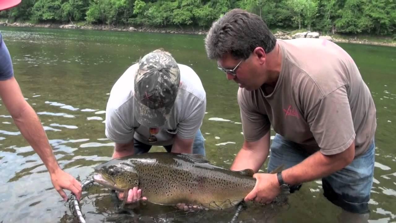 White River Fly Fishing School.jpg