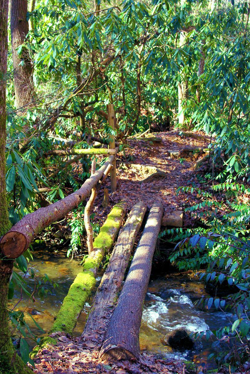 Improve Pisgah National Forest Trails.jpg