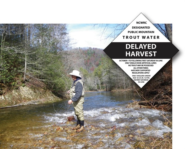 NC's Delayed Harvest Trout Waters Open June 2.jpg