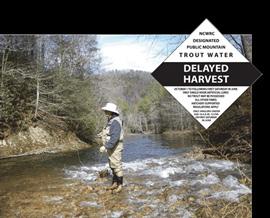 NC's-Delayed-Harvest-Trout-Water-Regulations-Begin-Oct.jpg