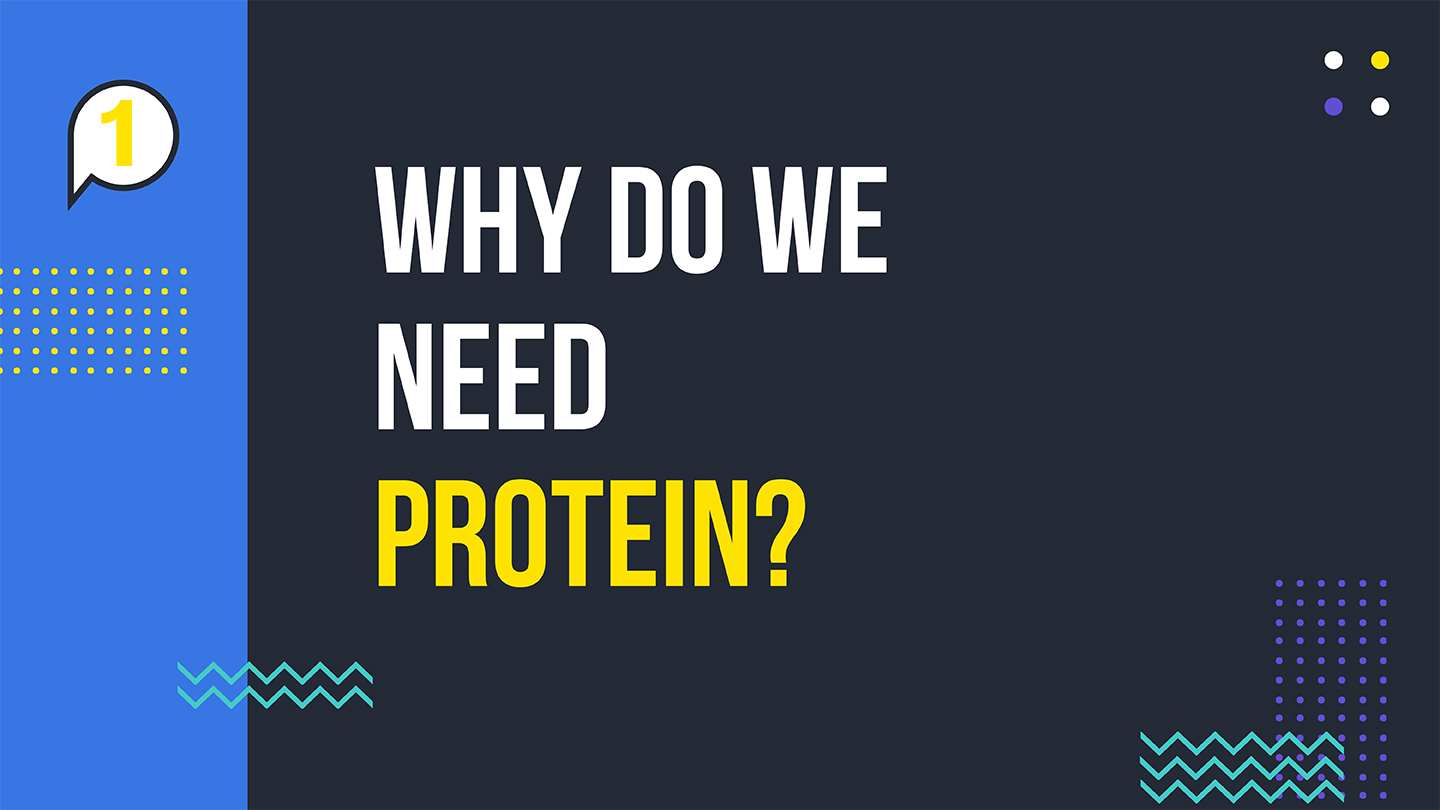 why do we need protein.jpg