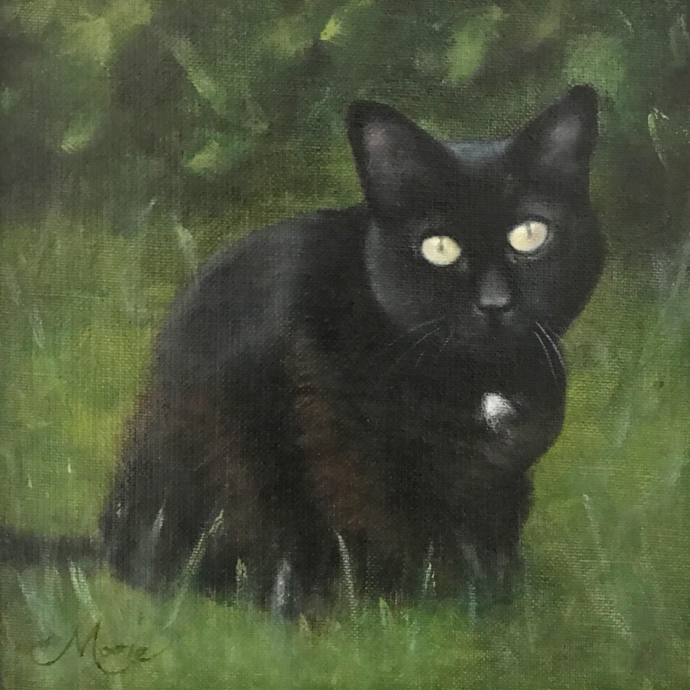 TUFFY THE CAT.jpg