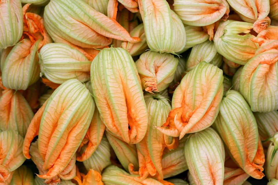 petals-of-zucchini-2349445_960_720.jpg