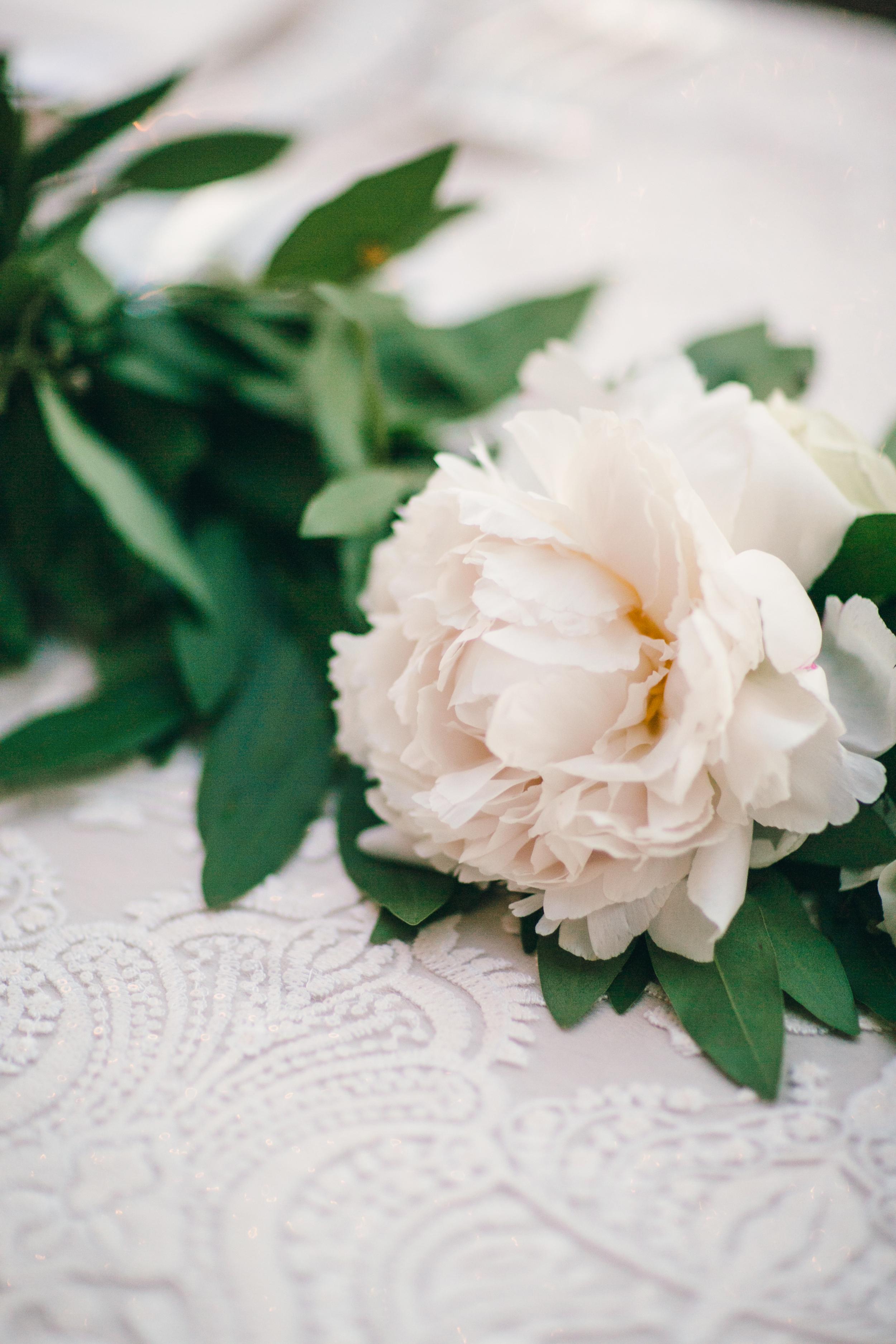 michellebeller.com | Michelle Beller Photography | Santa Barbara Wedding Photographer | Southern California Wedding Planning