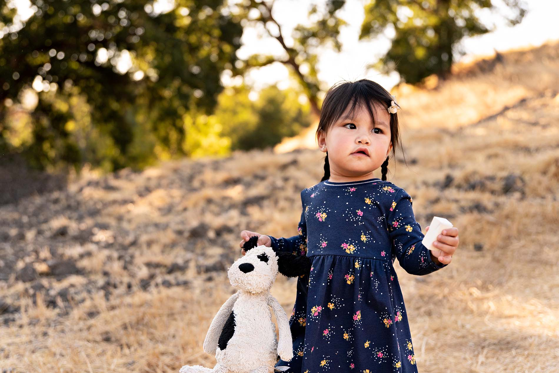 sharon kenney family photography stuffed animal