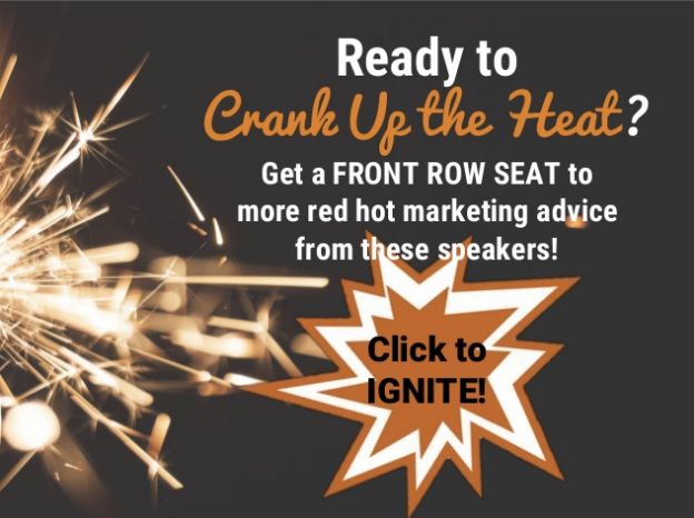 """""""  Ignite your Business - 19 Tips from Social Media Success Summit Speakers"""" - Donna Moritz"""