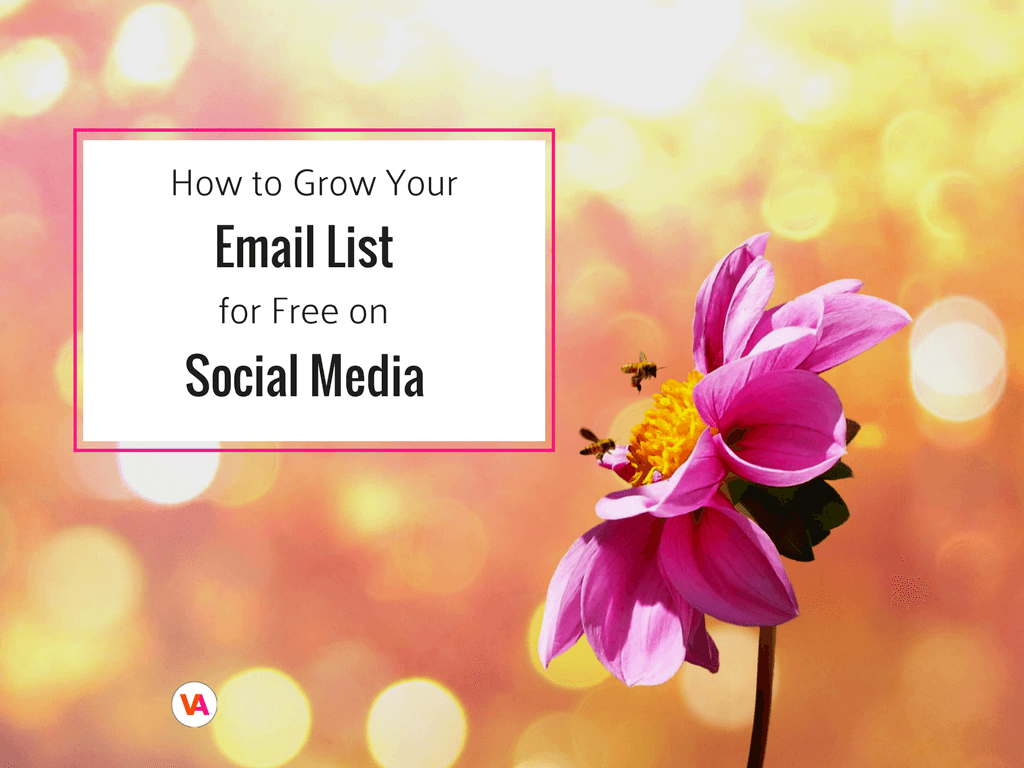 Email Marketing How to Grow your Email List on Social Media (website).png
