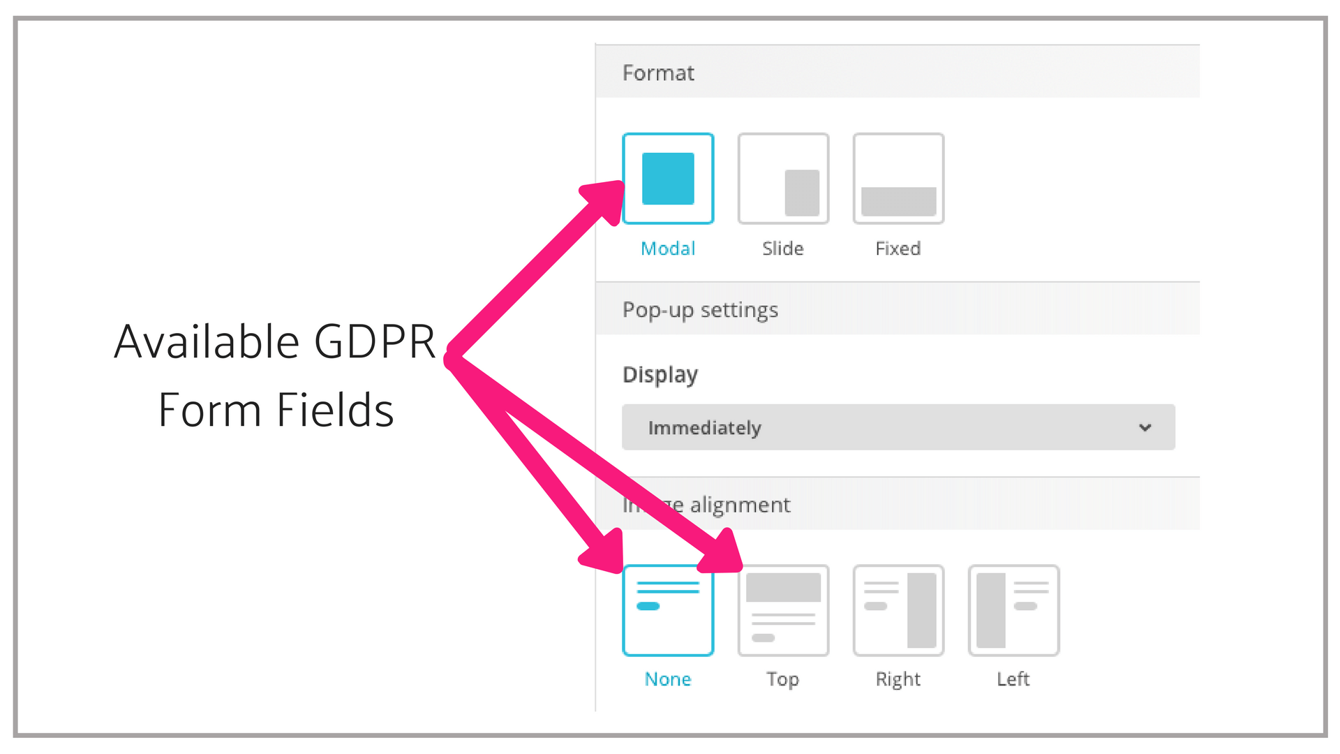 GDPR Forms Fields in Pop-up forms.png