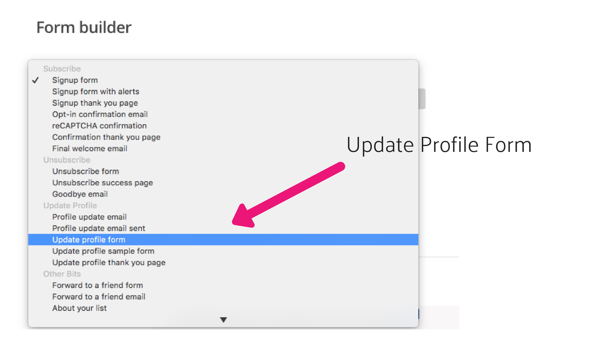 Update profile form in MailChimp.png