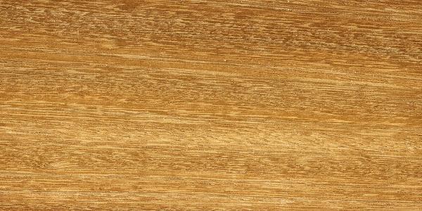 Iroko closeup grain pattern