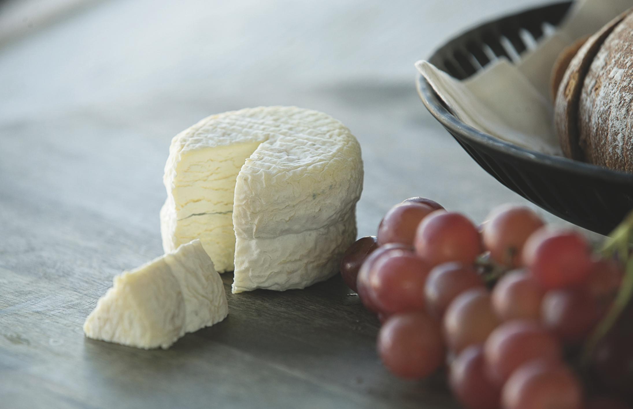 Maytag Cheese
