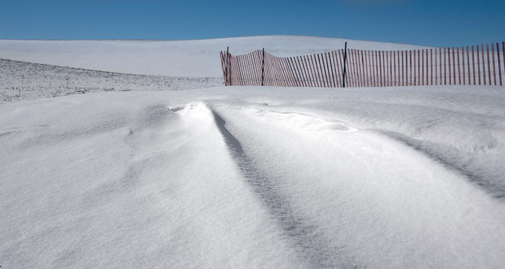10KM_Snowscape_24A8175.jpg