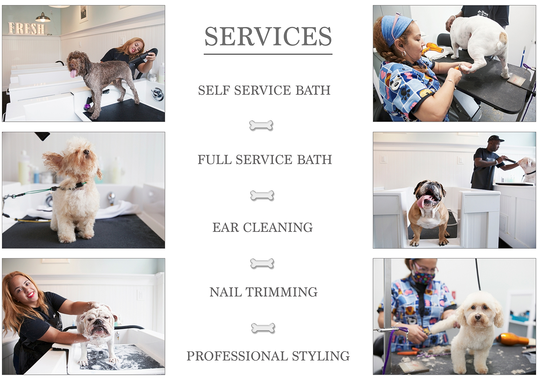Fresh Paws Bath House Flyer 2.jpg