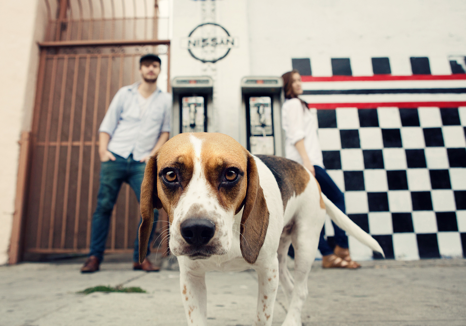 Photographing Pets and People on Location - Lighting, posing, composition and backgrounds.