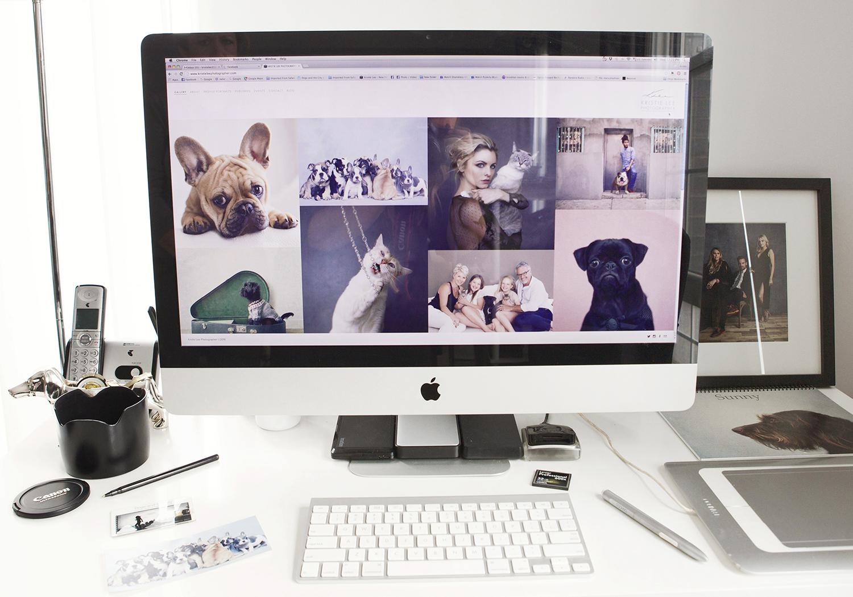 Portfolio Reviews - Website critique and online presence strategy.