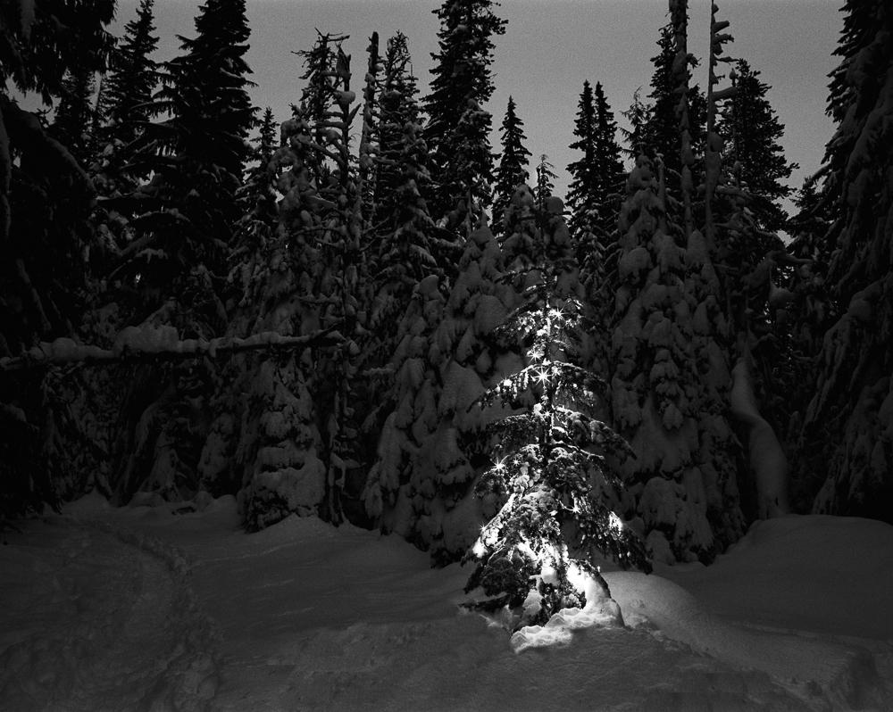 Pentax_winter_Jan-8-Edit.JPG