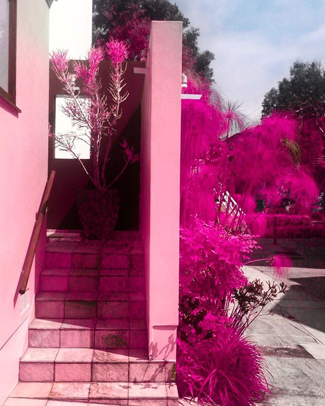 The Pink House, Venice. Full of color!  #AHPhotog