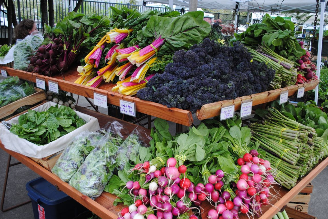 Lane County Saturday Farmers Market - More info here!
