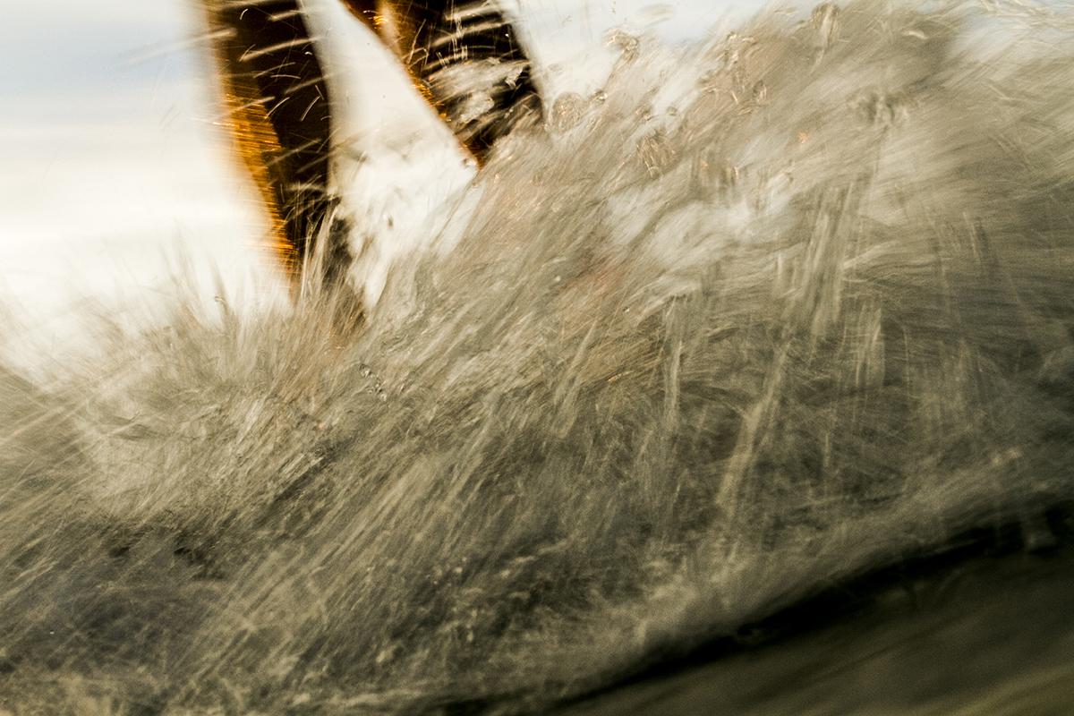 fran-miller-surf-photo-art-cacophony (14)-IMG_1306.jpg