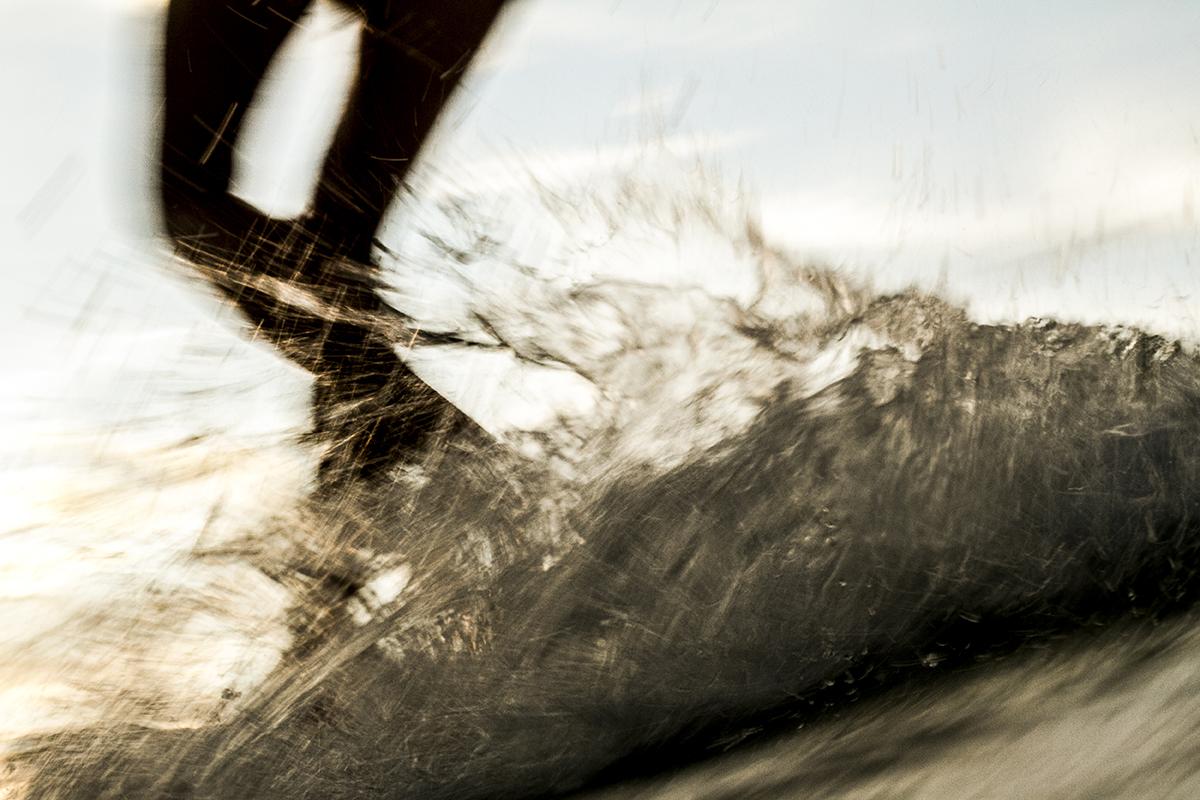 fran-miller-surf-photo-art-cacophony (15)-IMG_1316.jpg