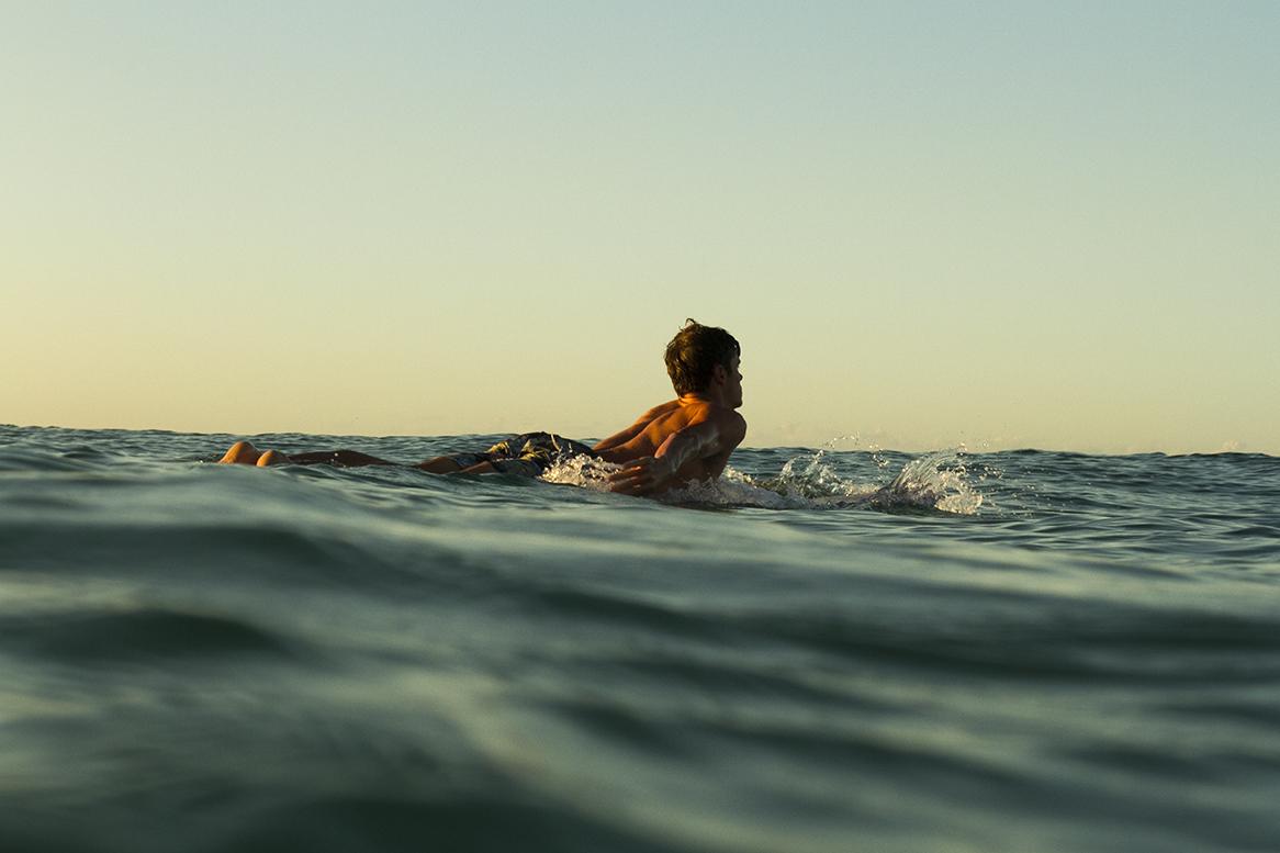 IMG_2821-fran-miller-photo-snapper-australia-4-5-2016-jack-entwistle.jpg