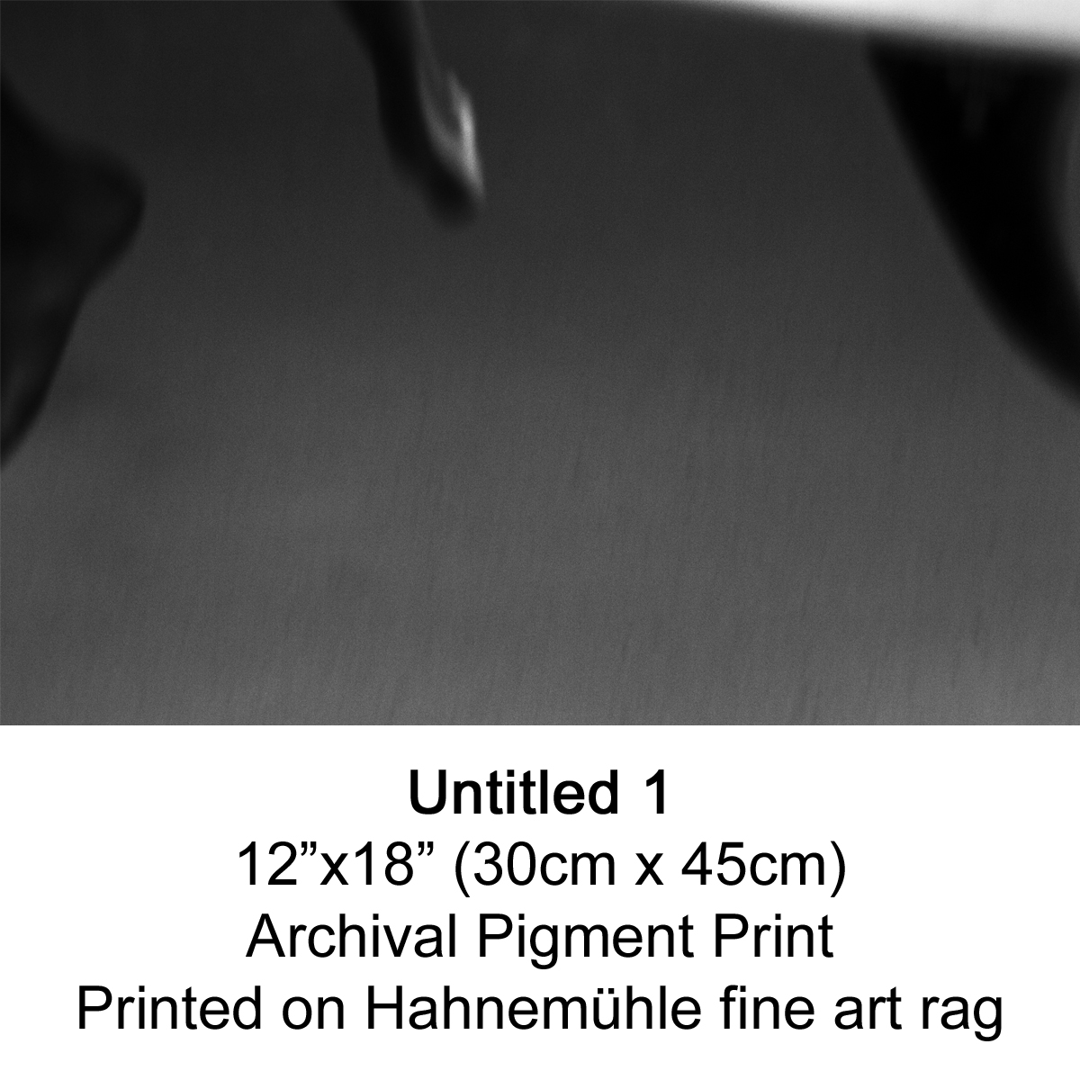 Untitled 1 by fran miller.jpg