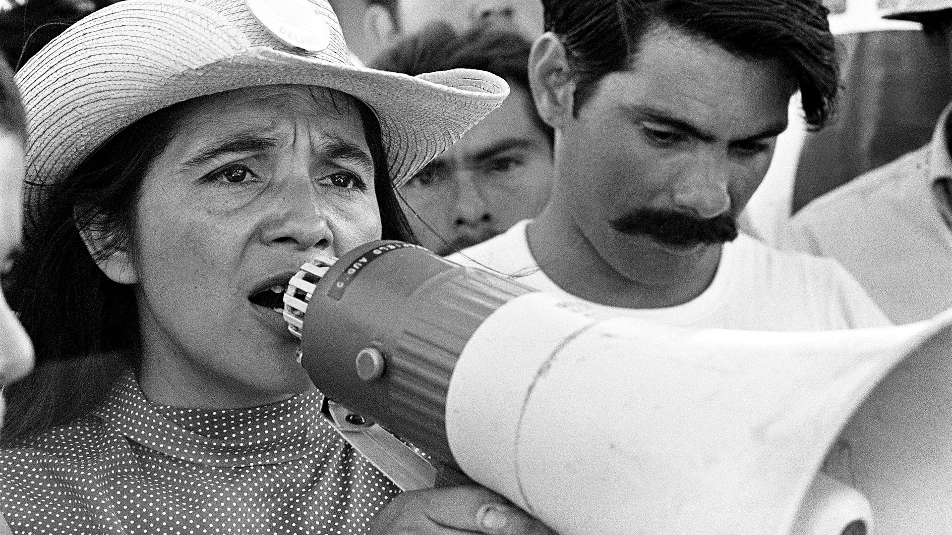 9. DOLORES  PBS  The documentary biopic on activist Dolores Huerta had a solid performance at the box office earning an impressive $554,000.