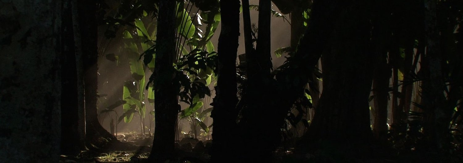 TEMPLO VERDE  (Luiz Eduardo Lerina, Brazil, 2019, 58 min. In Portuguese with English subtitles)   Templo Verde  ( Green Temple ) has at its center a very special garden where thousands of plant species are sheltered, some endangered. Featuring the participation of landscape artist Cecilia Beatriz da Veiga Soares, biologists Gustavo Martinelli and Henrique Rajão, and nature photographer João Quental, the documentary guides us through the diversity and exuberance of the flora and fauna of Rio de Janeiro's iconic Botanical Garden. The Garden is located between the  Floresta da Tijuca  (Tijuca Forest) and urban Rio de Janeiro, consequently provoking reflection on the fate of a rainforest surrounded by city, the risks and challenges for its conservation, and the need for public awareness in order to preserve what remains of the native flora and fauna of Rio's Mata Atlantica.   Saturday, August 17, 2pm