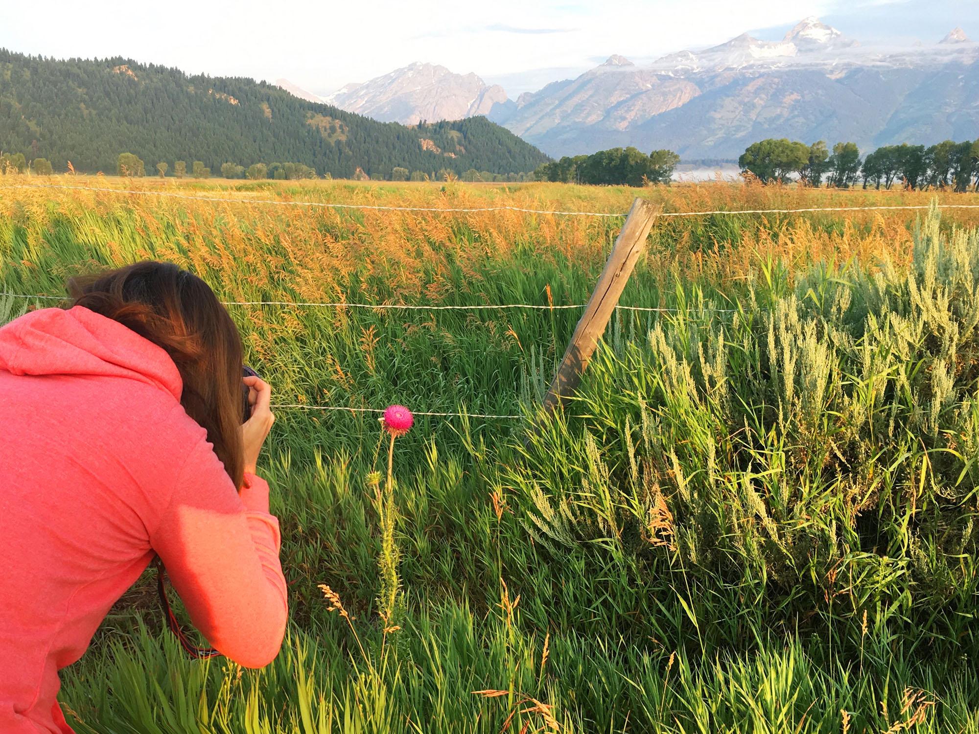 jo-torrijos-states-of-reverie-grand-teton-national-park-mormon-row-sunrise-4.jpg
