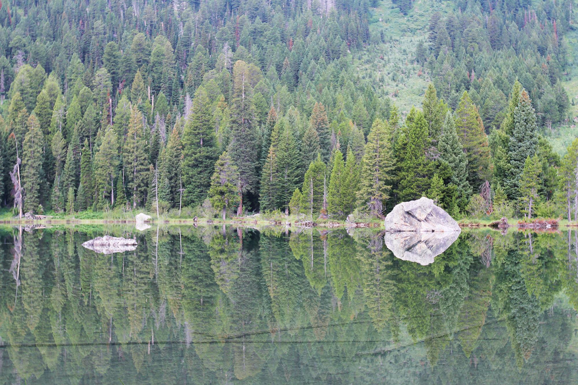 jo-torrijos-states-of-reverie-grand-teton-national-park-string-lake-hike-2.jpg