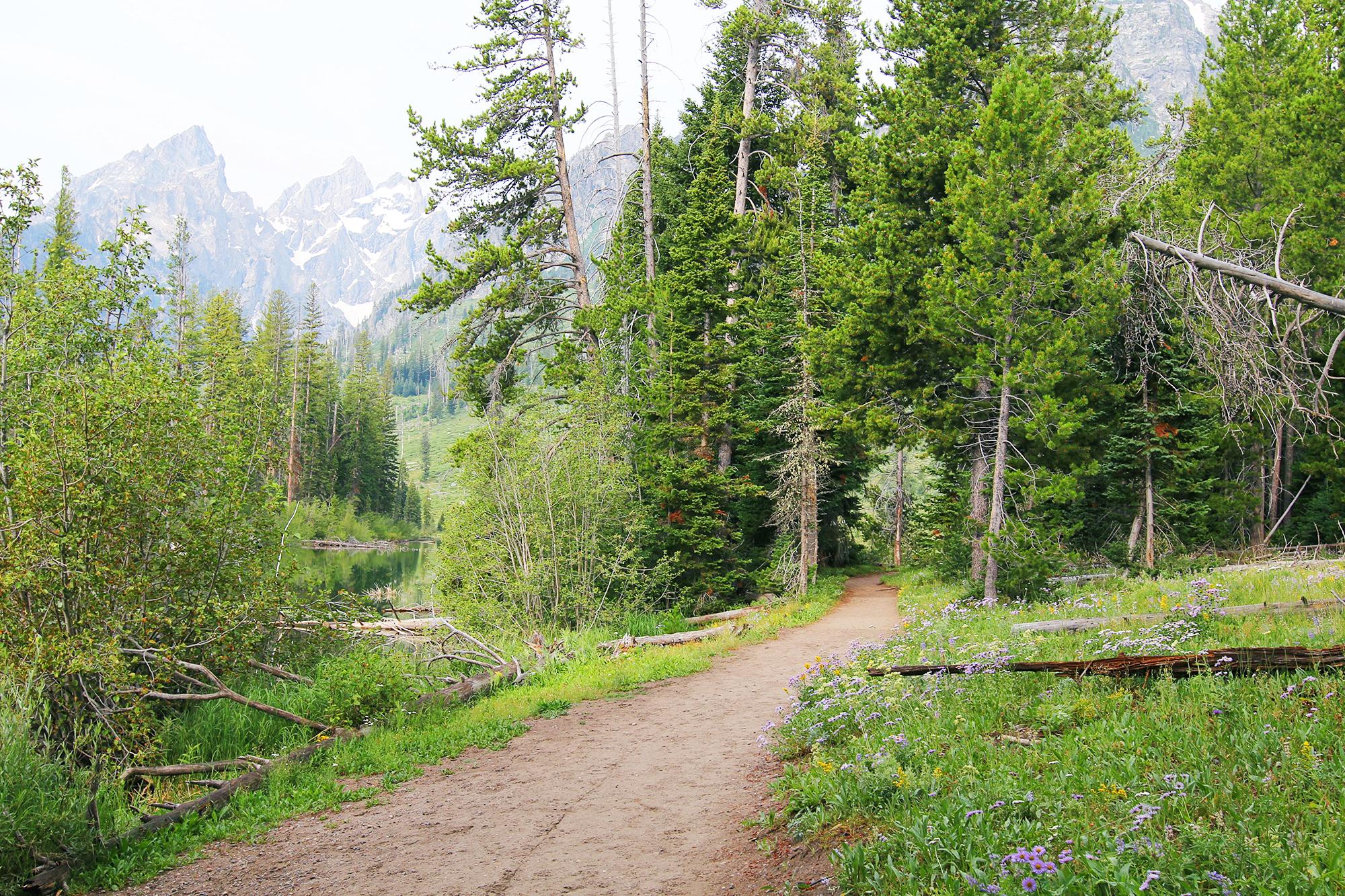 jo-torrijos-states-of-reverie-grand-teton-national-park-string-lake-hike-3.jpg