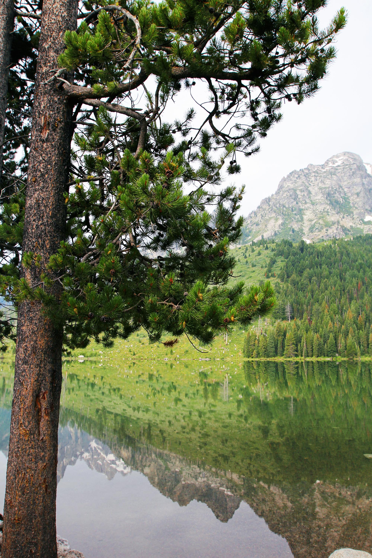 jo-torrijos-states-of-reverie-grand-teton-national-park-string-lake-hike-5.jpg
