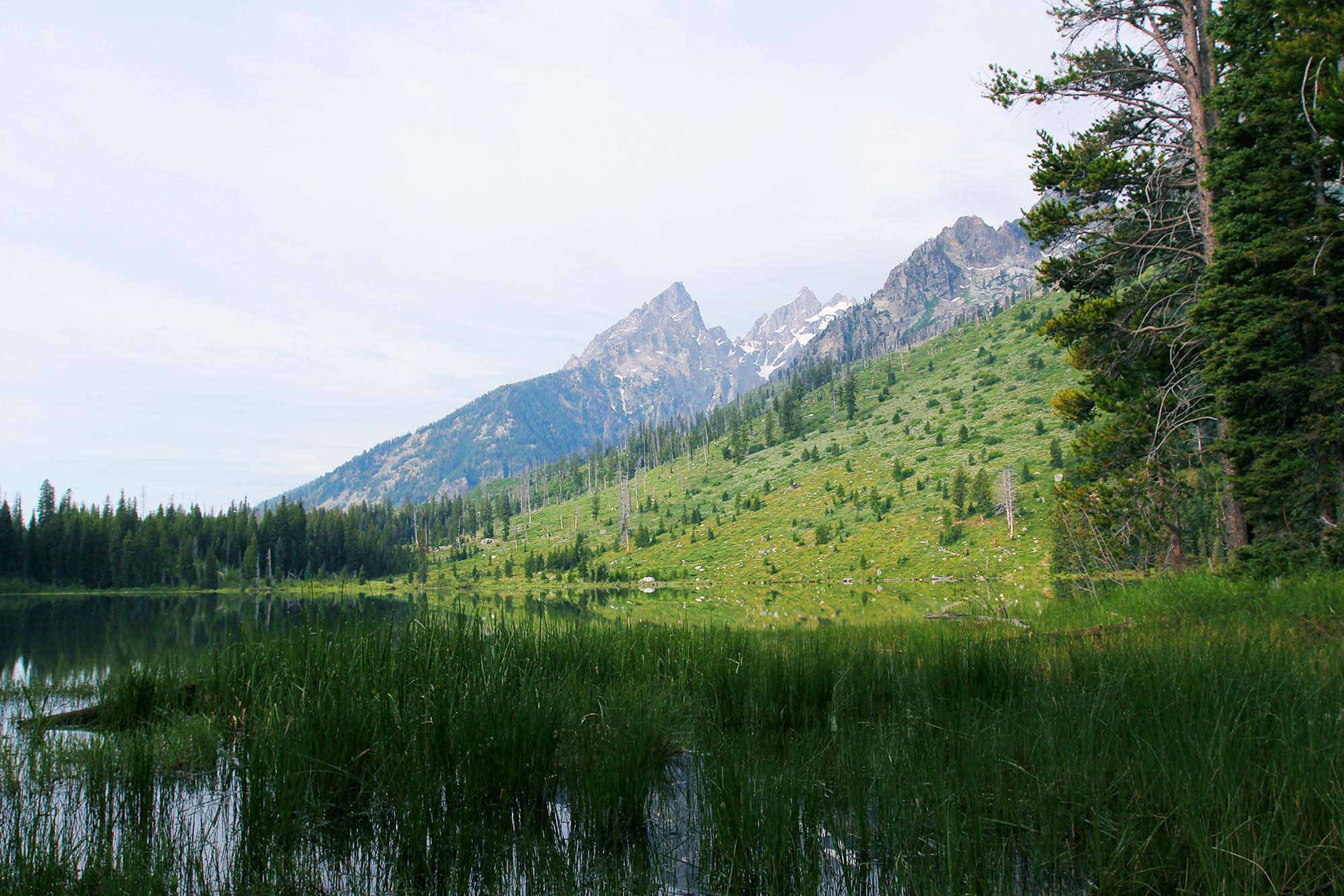 jo-torrijos-states-of-reverie-grand-teton-national-park-string-lake-hike-6.jpg