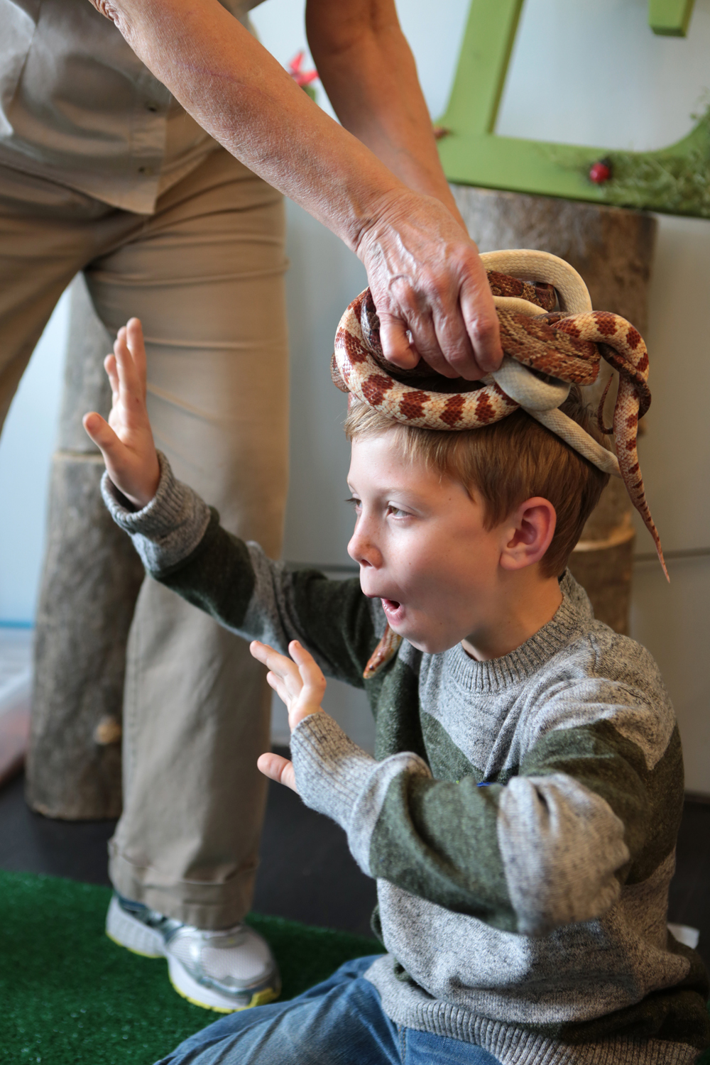 tarynco-events-bug-themed-kids-birthday-party-bugshow-snakes.jpg