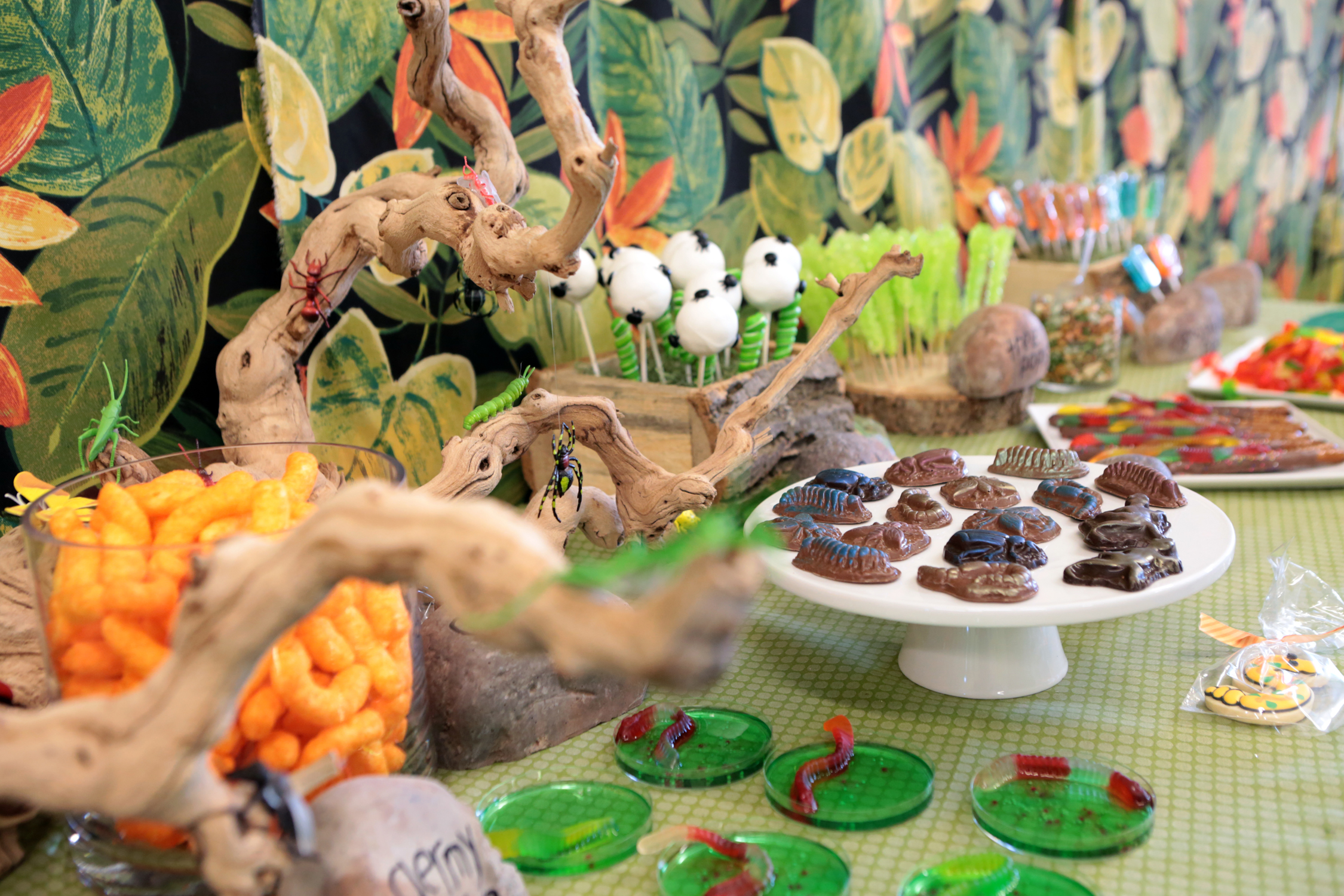 tarynco-events-bug-themed-kids-birthday-party-candy-snack-bar.jpg