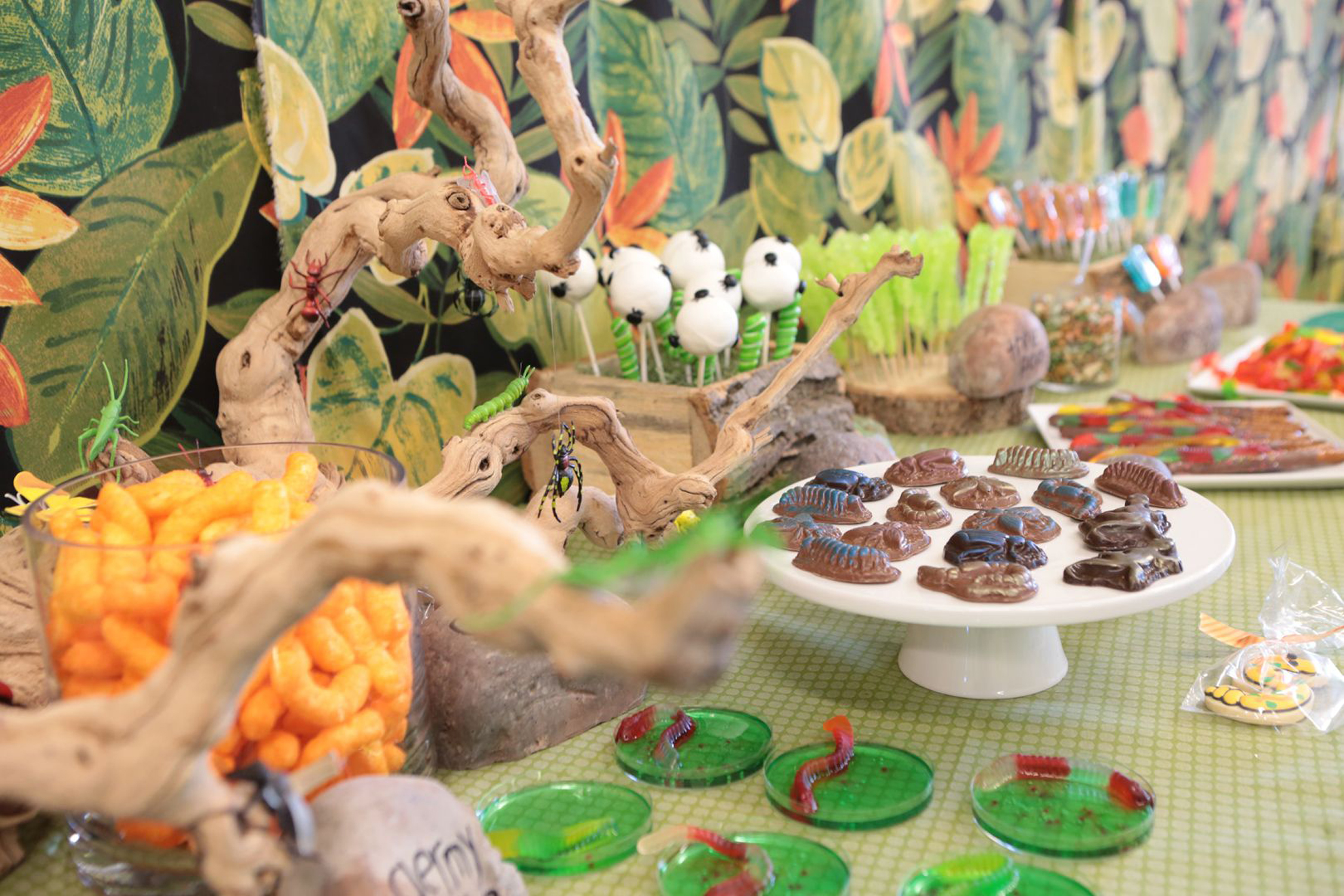 tarynco-events-bug-themed-kids-birthday-party-dessertbar-candy.jpg