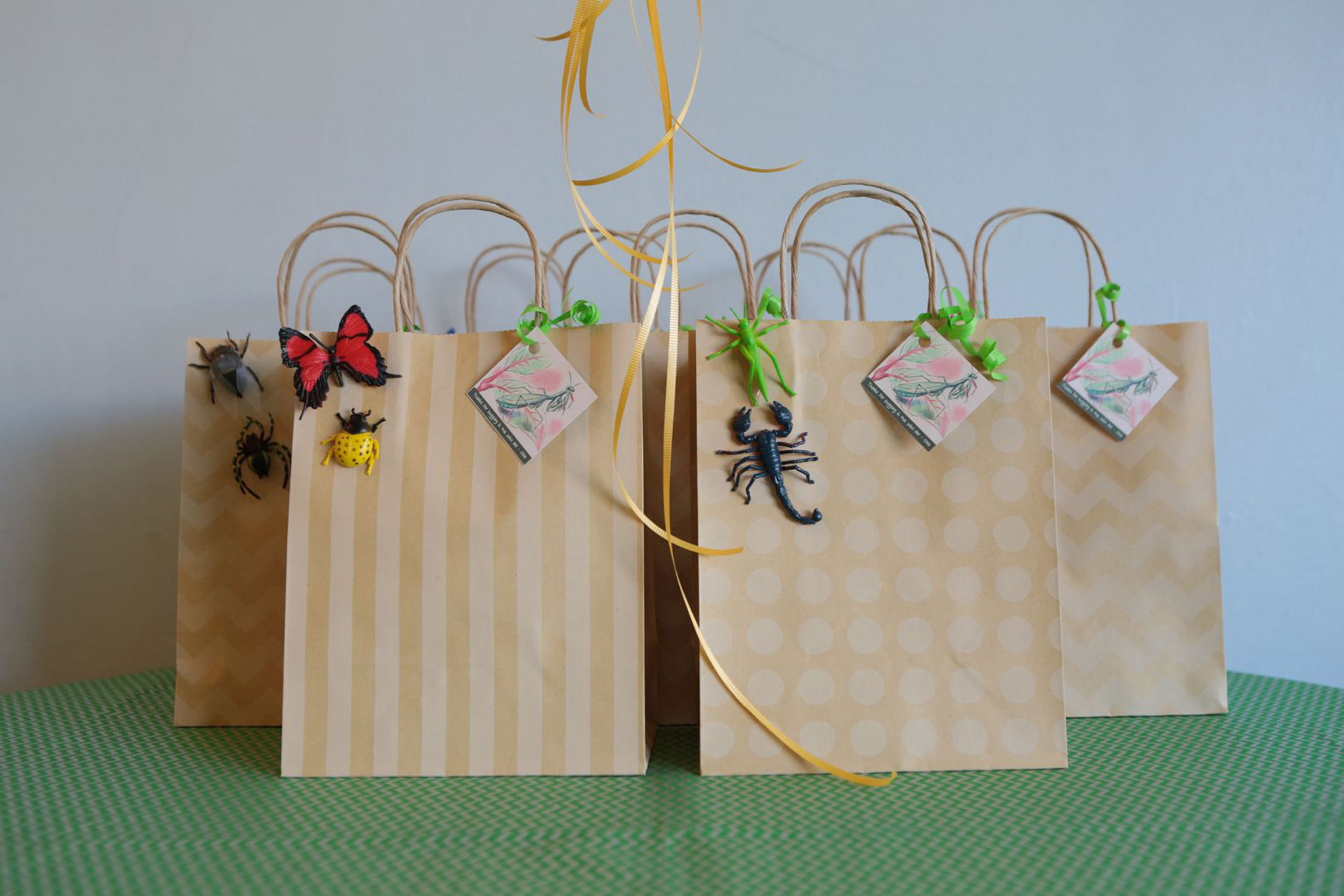 tarynco-events-bug-themed-kids-birthday-party-favors.jpg