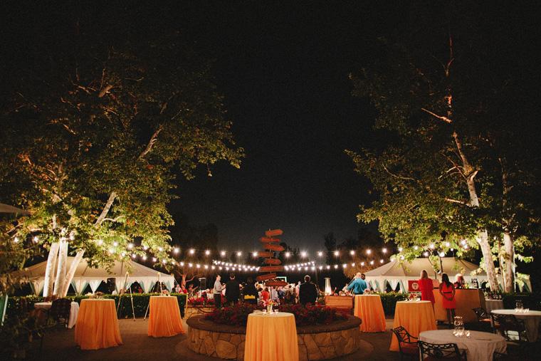 Dr-Suess-wedding-109.jpg