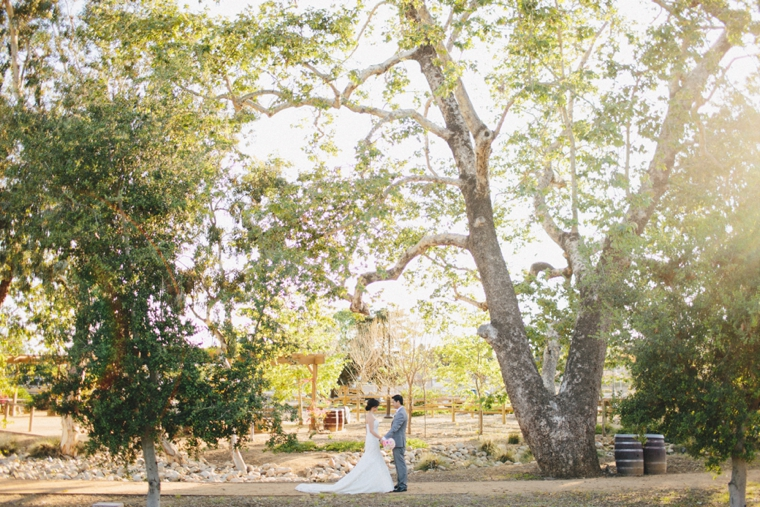 serra-plaza-wedding-29.jpg