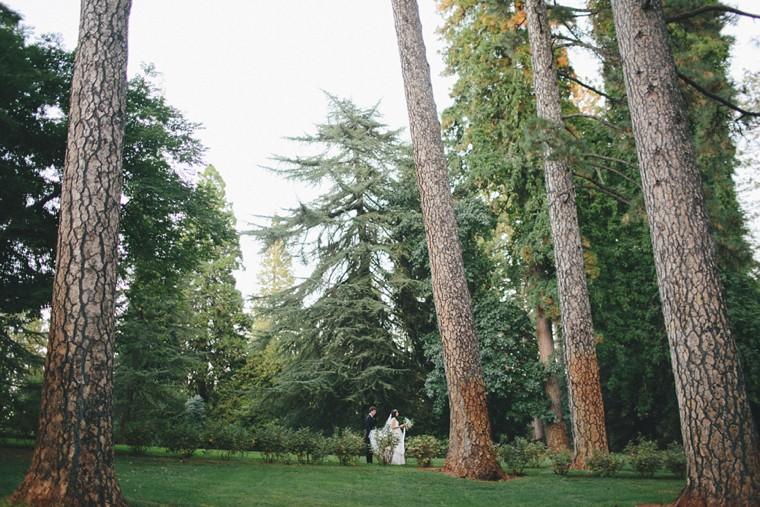 Empire-Mine-State-wedding-64.jpg
