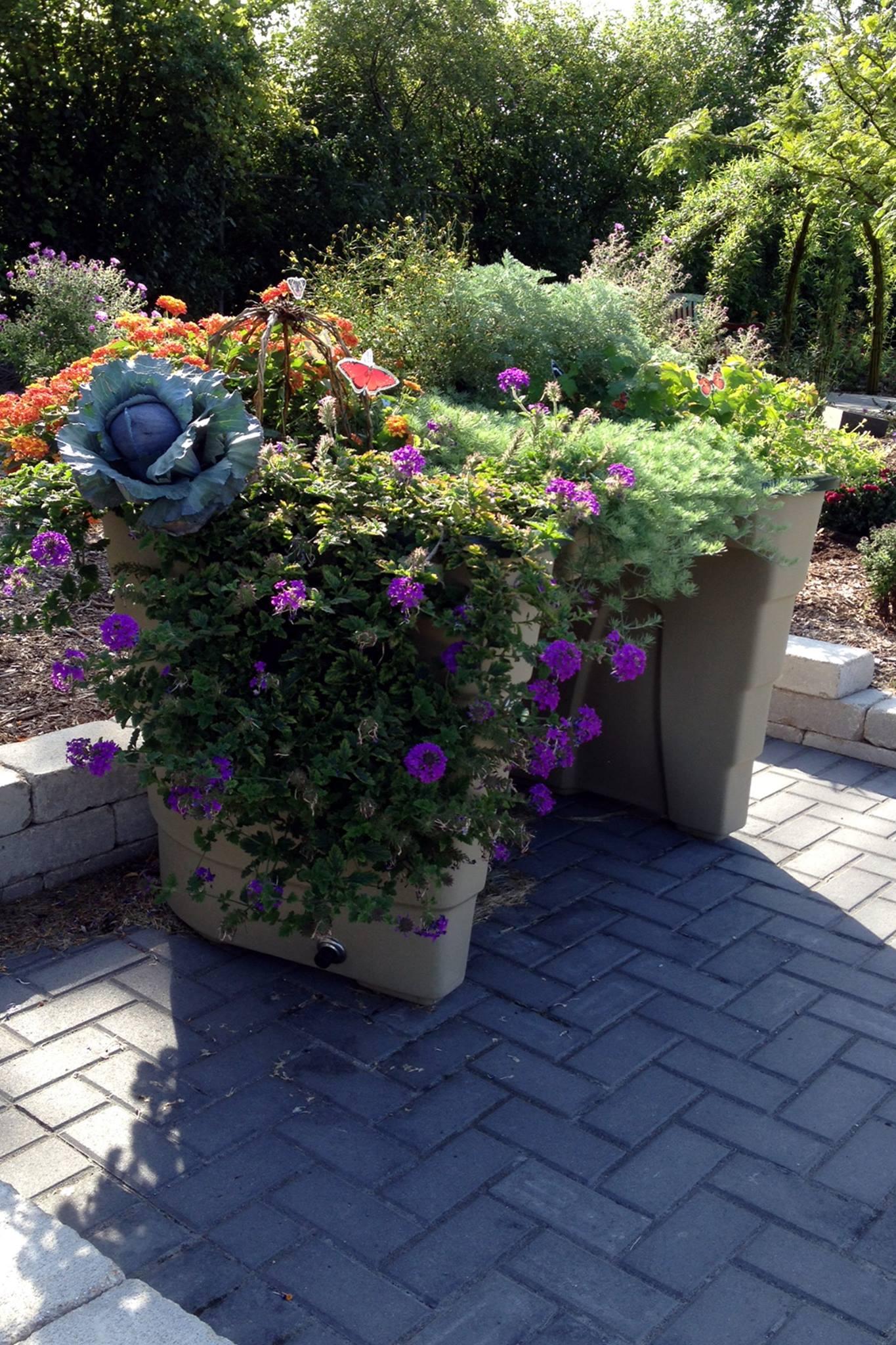 Wheelchair accessible Garden