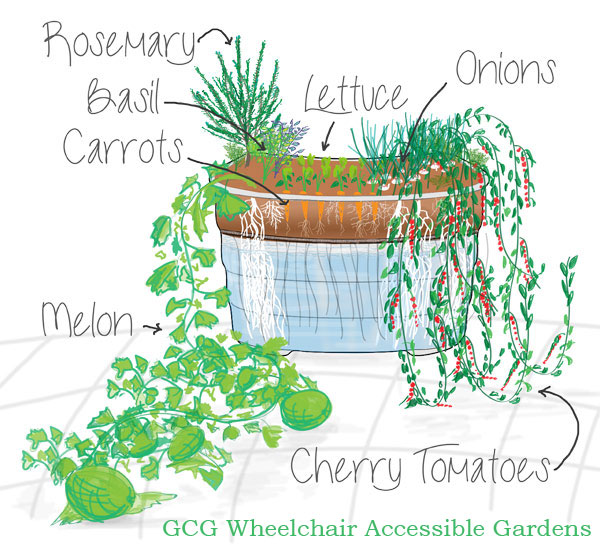 Semi-portable hydroponic garden grows all types of fruits, flowers and vegetables. Offers wheelchair accessibility.
