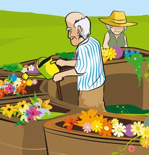 horticultural-therapy-accessible raised garden beds -for-senior-assisted-living-homes