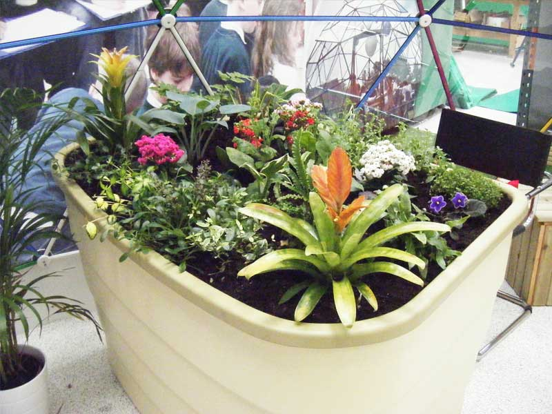 indoor-sensory-gardens-for-children-with-dissability-in-special-education-schools-and-assisted-living-homes.