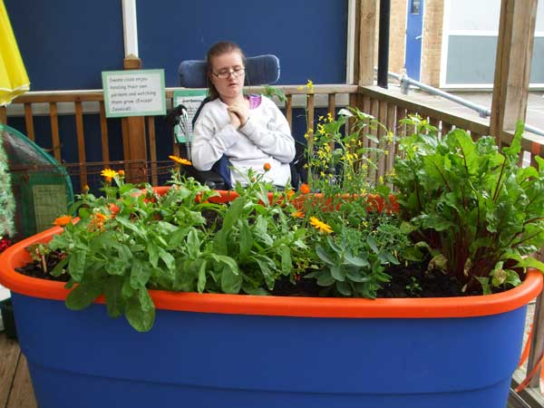sensory-garden-for-wheelchair-accessible-gardening-for-Horticultural-therapy-in-special-education-schools