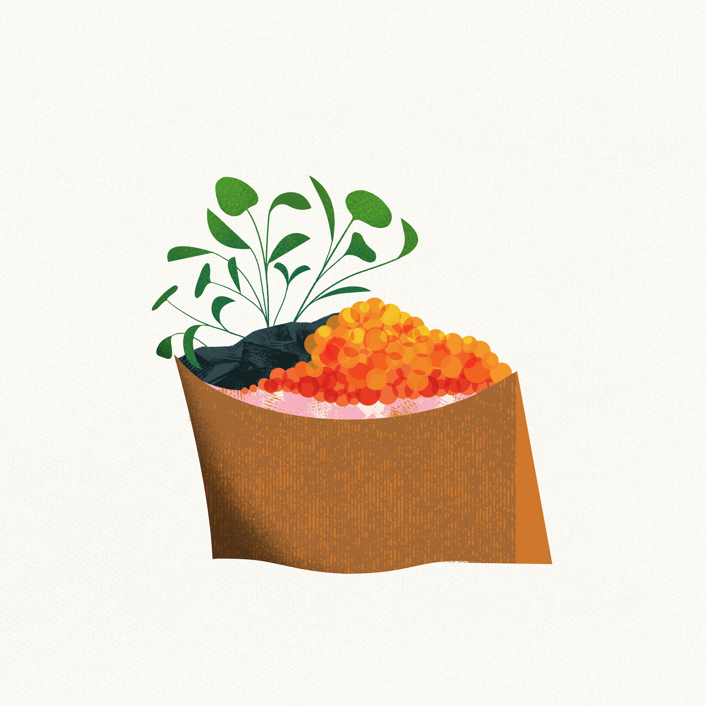 Tofu Pocket.jpg
