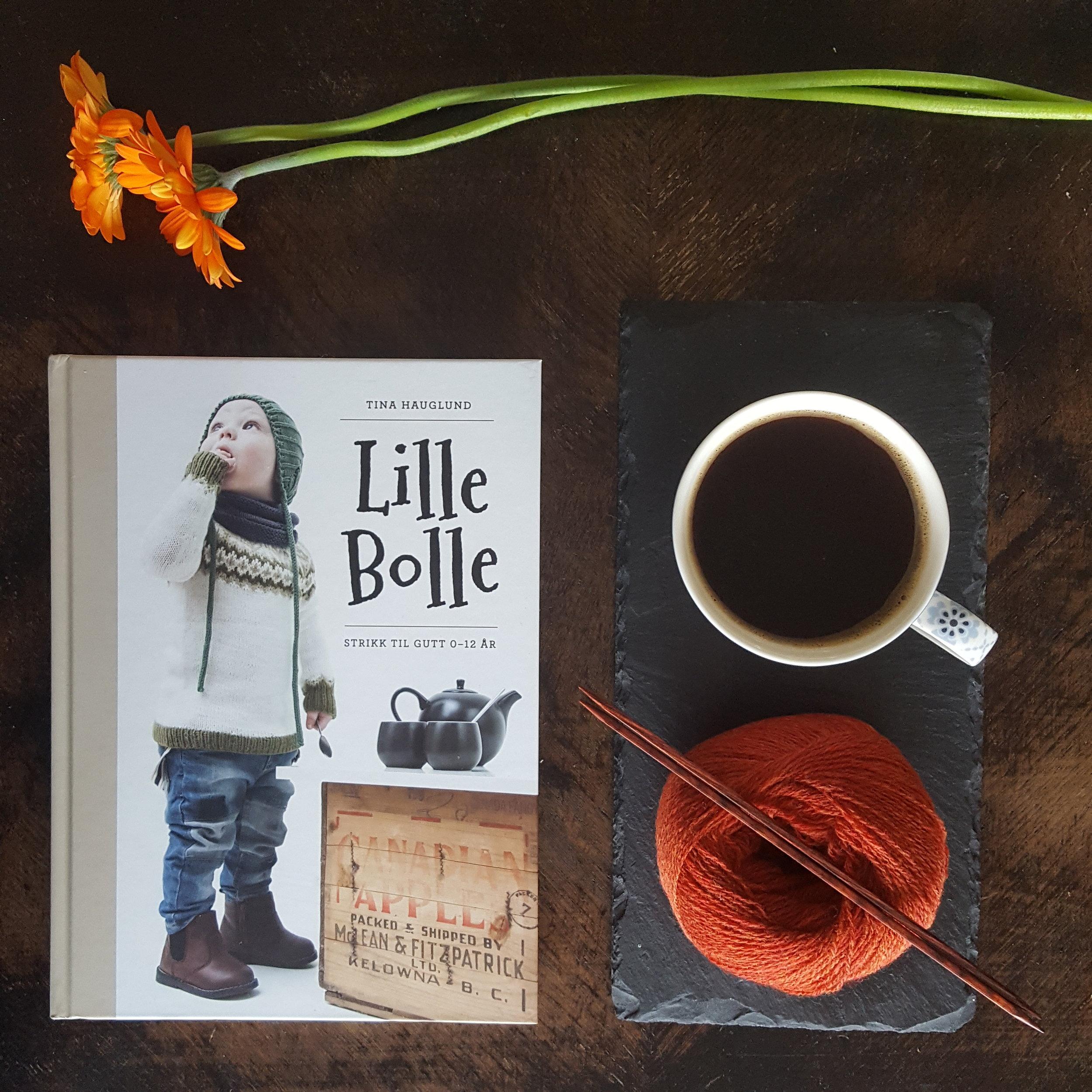 Eksempel : Bok i miljo. Varme farger, garn og kaffe rundt boken indikerer kos - hygge - ro. Litt hyttestemning? Blomster frisker opp og henter opp det grønne i bokomslaget. Stein, tre, papir, garn og blomster gir varierte strukturer.