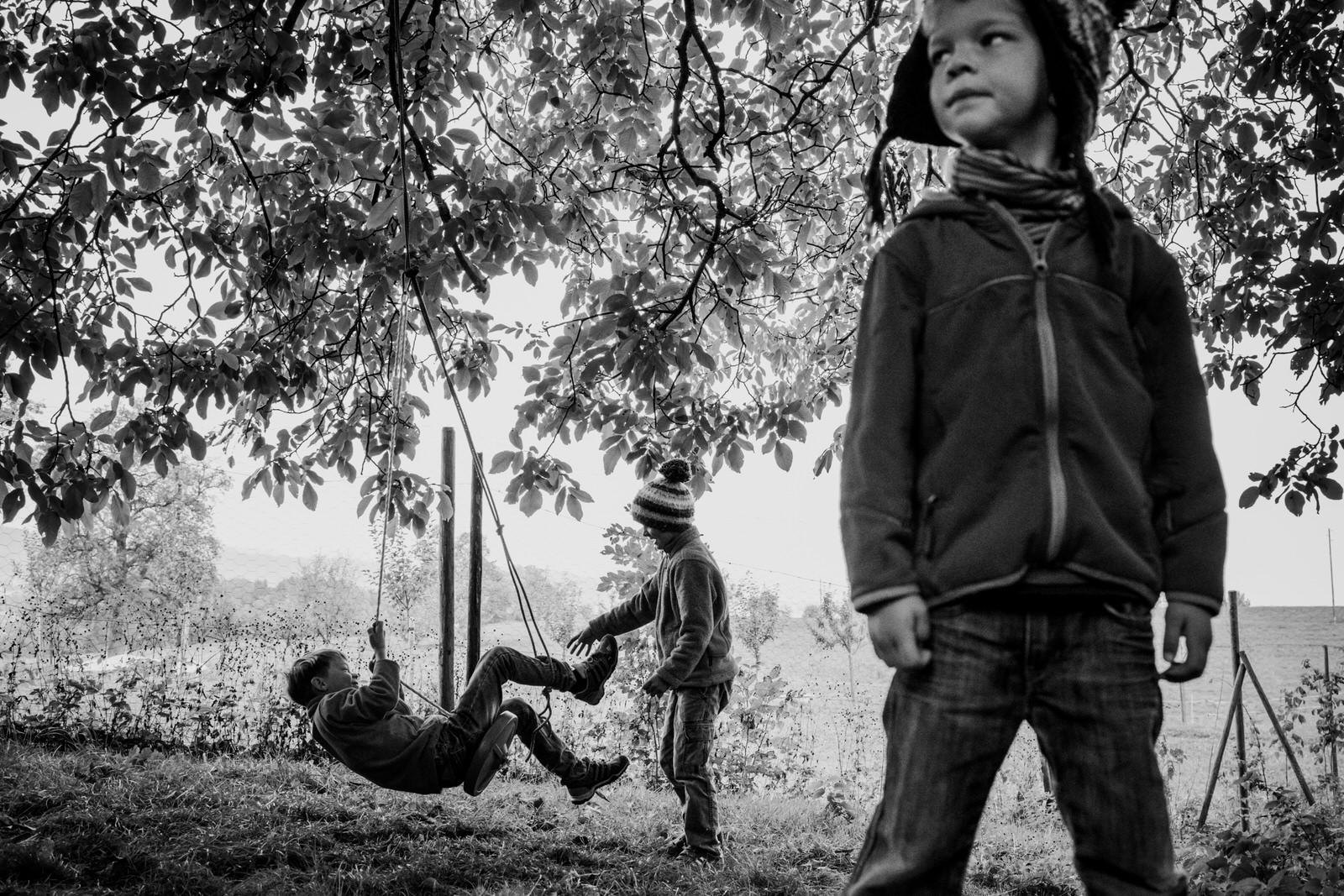 Jungen schaukeln | Familienfotos drinnen und draussen - Familienfotografin unterwegs