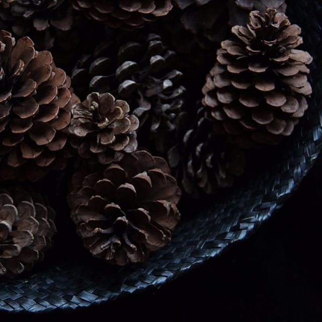 ...rain & clouds in Buenos Aires are bringing a festive christmas mood. The best wintery decoration comes for free in the forest. I love pine cones and they give me the northern hemisphere frosty feeling in summer!!! Happy weekend!!! #pinecones #pine #instamood #mood #texture #christmasdecoration #happyweekend #botanical #winter #collection #photooftheday #naturelover #fauna #darktones #natural @belumiguens 📷Danke